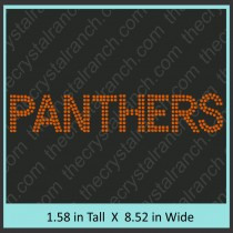 Panthers Rhinestone Transfer CRT358