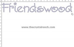 Friendswood Rhinestone Transfer CRT263